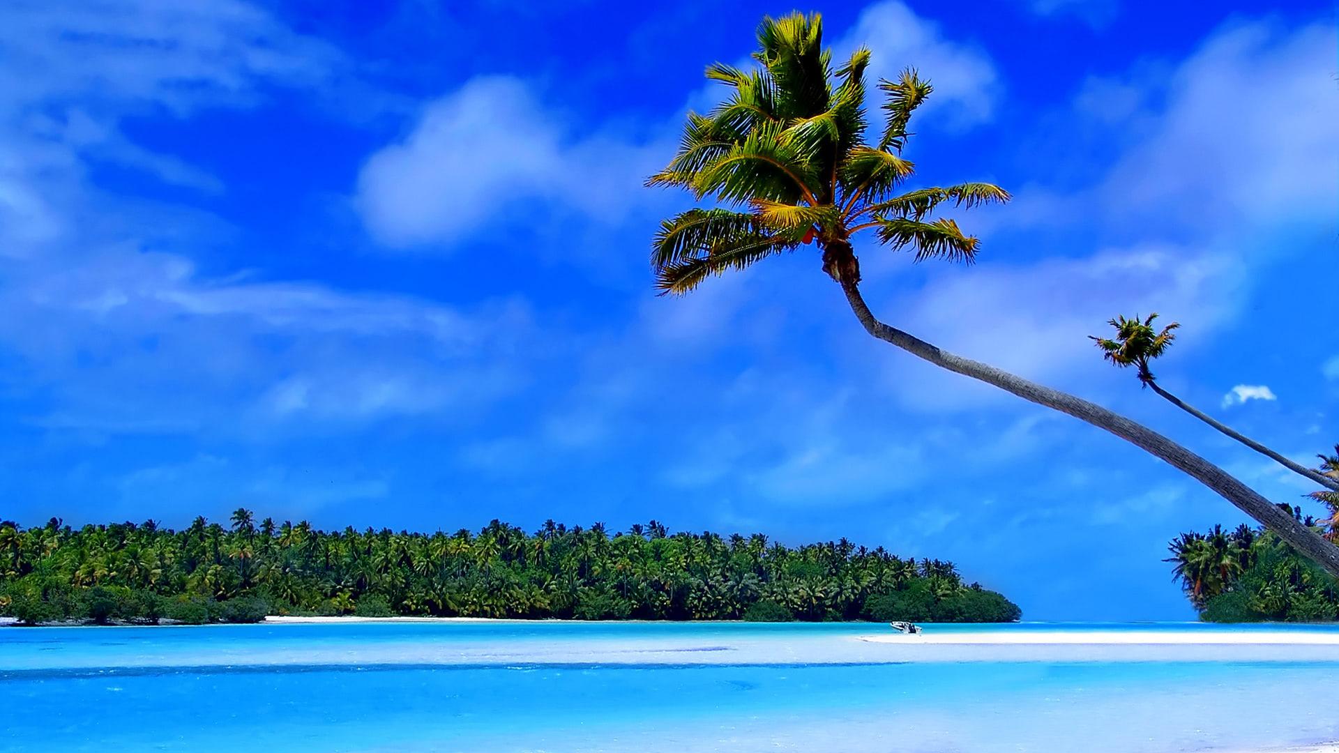 The caribbean islands wallpaper beach wallpapers - Caribbean wallpaper free ...