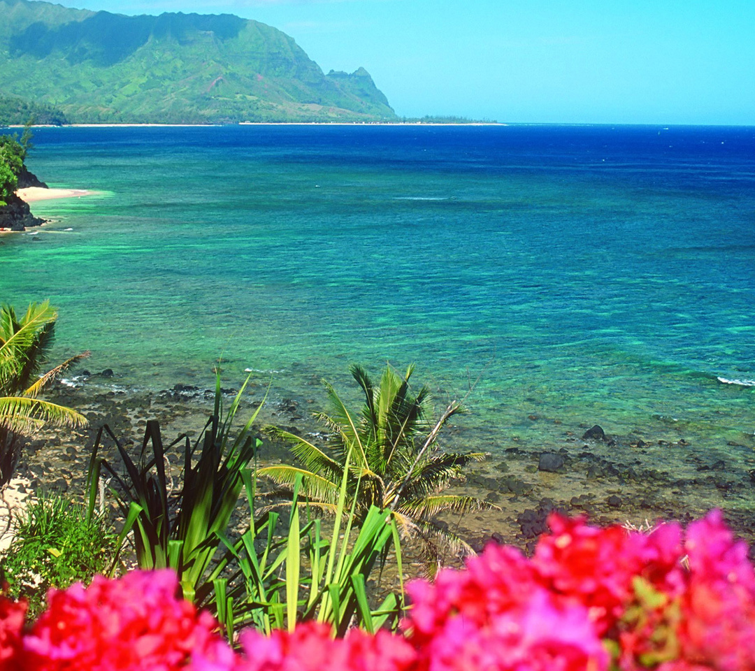 Delightful Nature Beach Wwallpaper