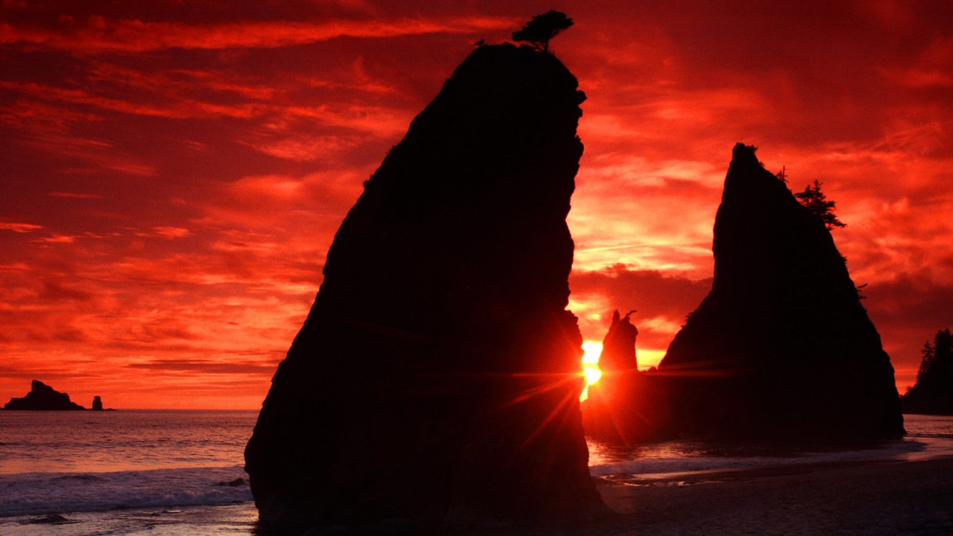 Amazing Wallpaper Laptop Sunset - eye-catching-red-sunset-beach-wallpaper-1920x1080-336  2018_28678.jpg