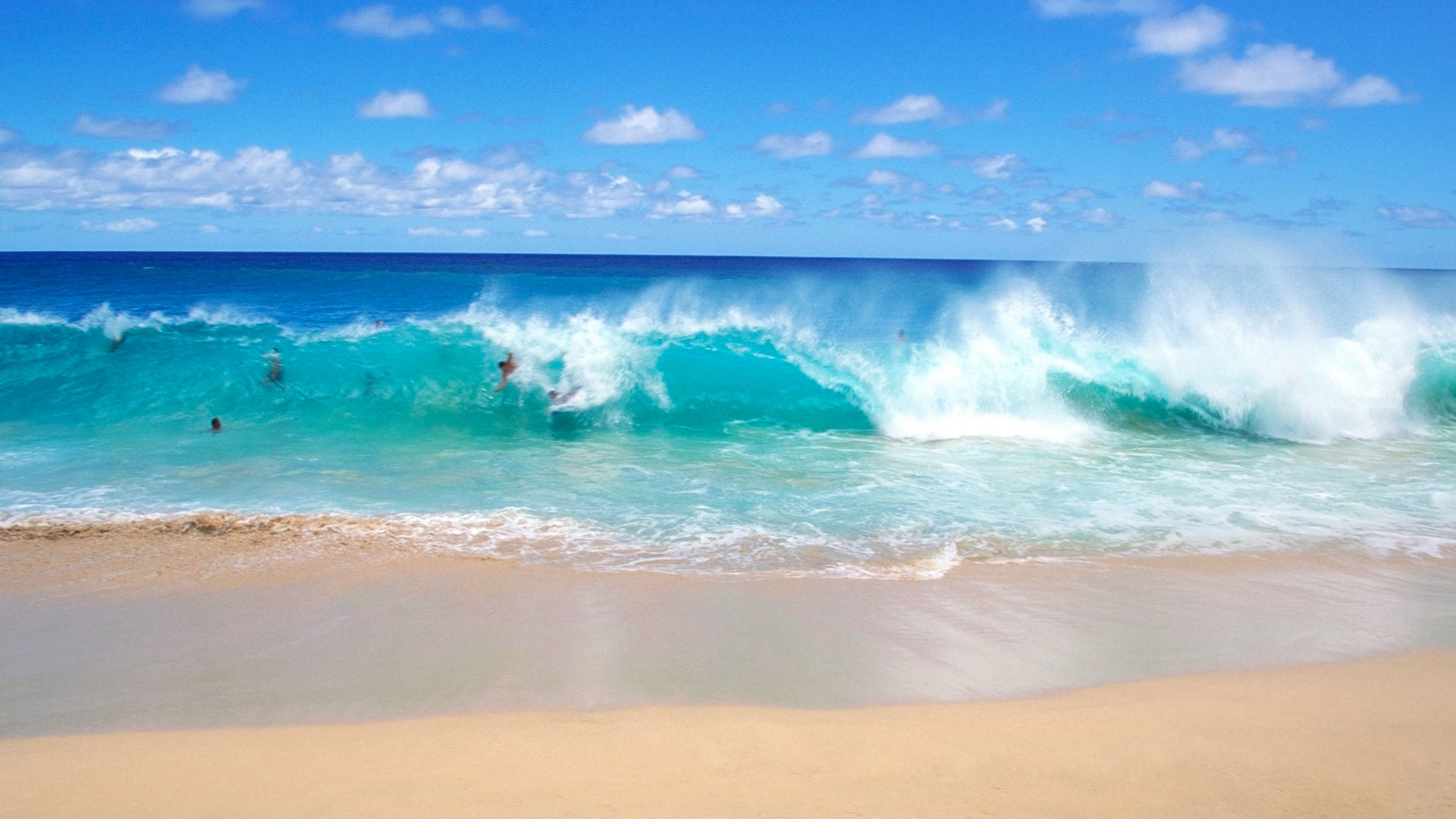 fun on the playful ocean waves wallpaper