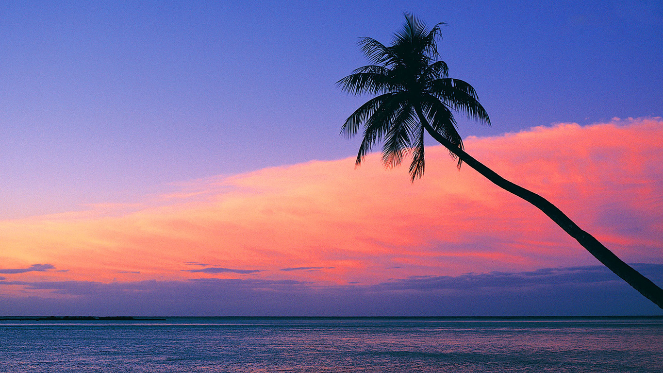 Pink Beach Sunset Wallpaper: Look At The Pink Sunset From The Beach Wallpaper