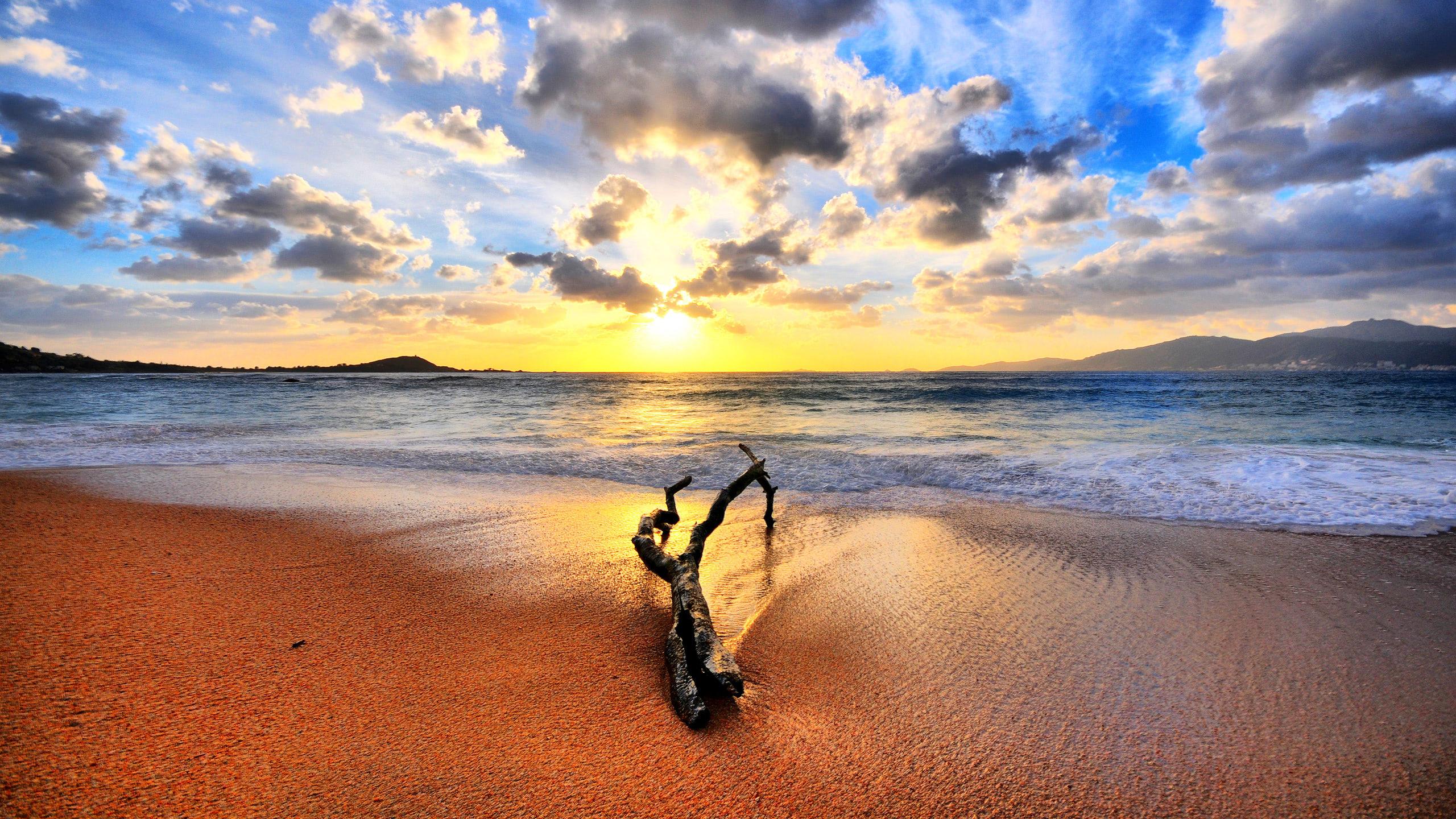 Sunset Drift Wood Beach Background Wallpapers Download 2560 1080 Wallpaper