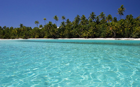 Crystal clear tropic wallpaper