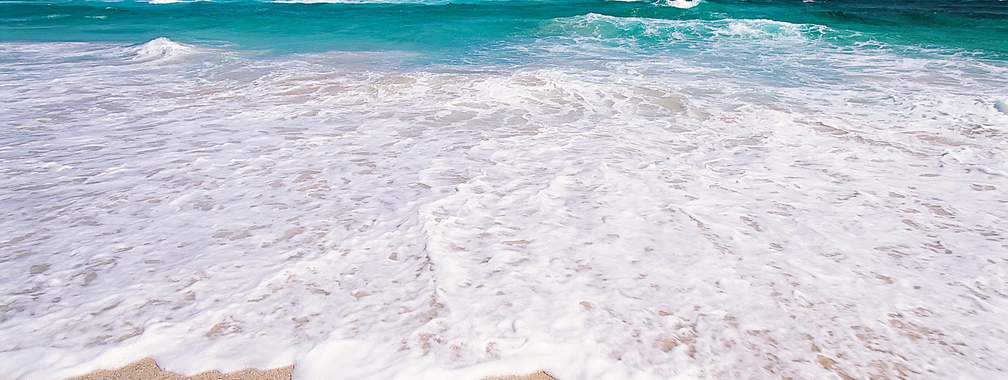 Different colors of tropical beach wallpaper