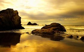 Golden beach background