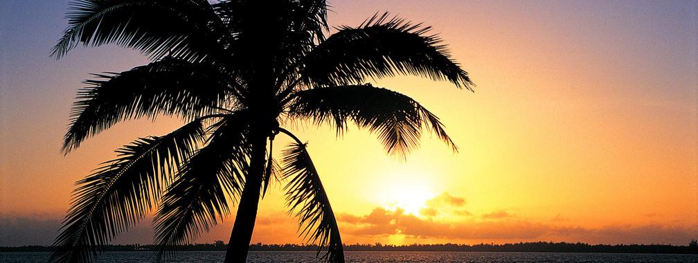 Orange sunset on the tropic beach background