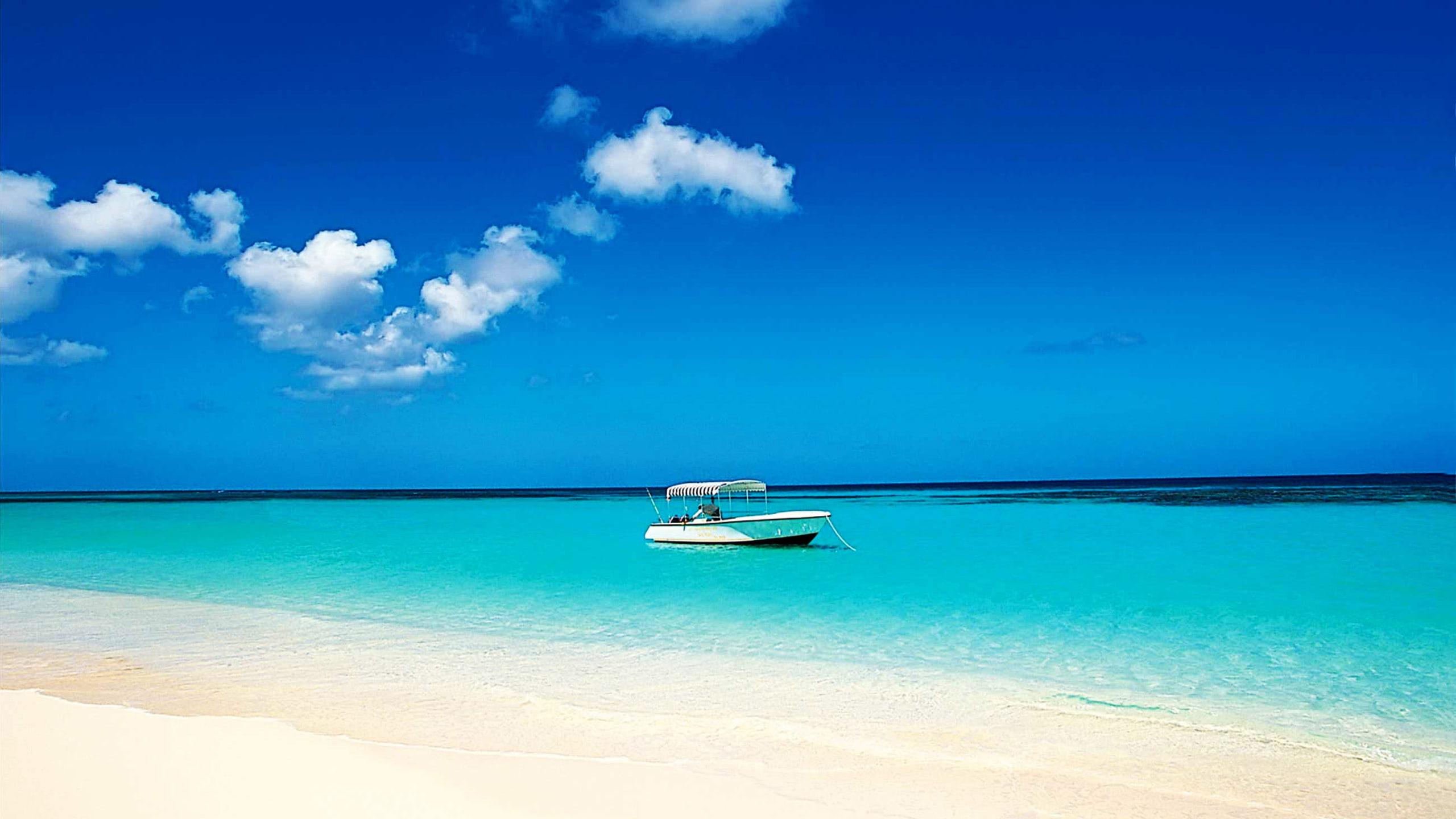 Best Wallpaper Macbook Tropical - tropical-beach-vacation-wallpaper-2560x1440-271  Photograph_364483.jpg