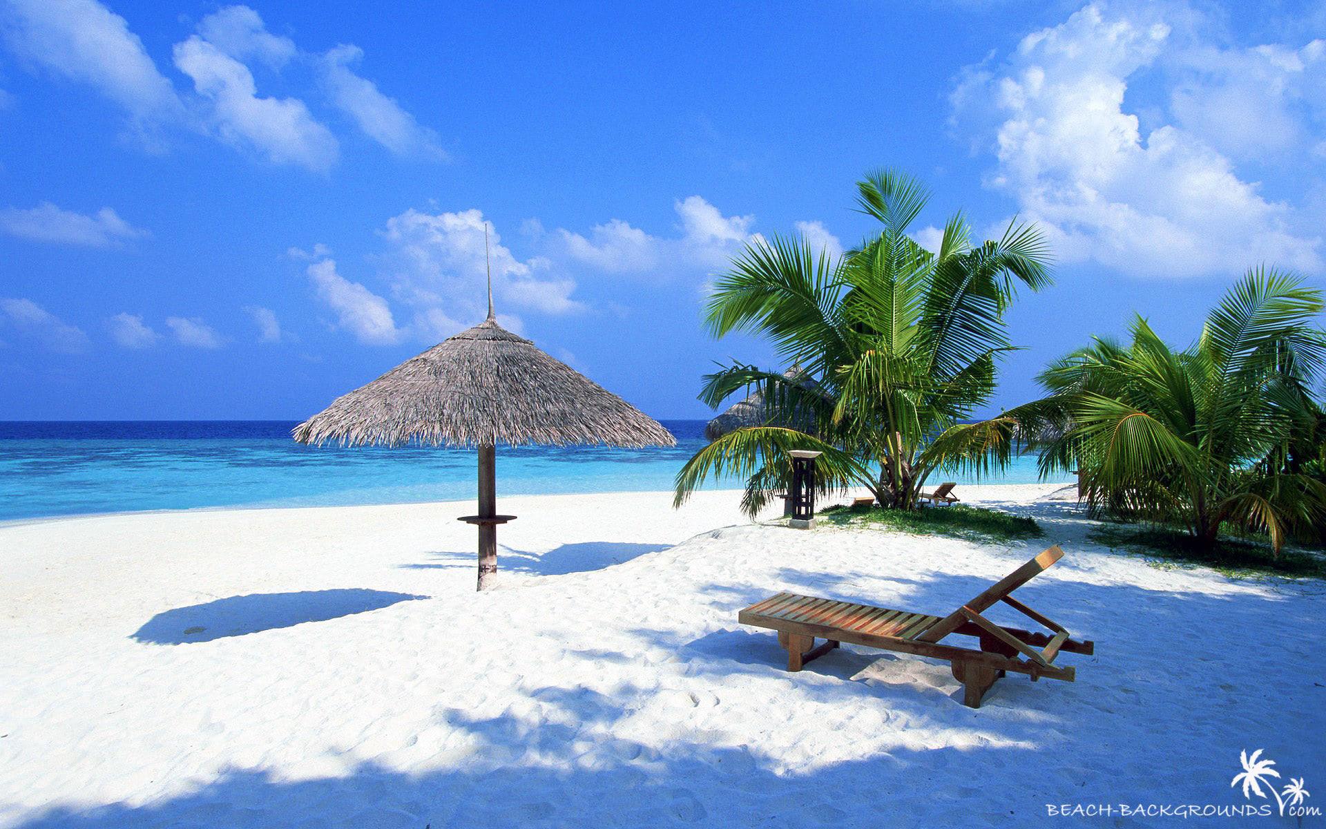 Most Inspiring Wallpaper Macbook Tropical - tropical-beach-wallpaper-1920x1200-144  2018_406024.jpg