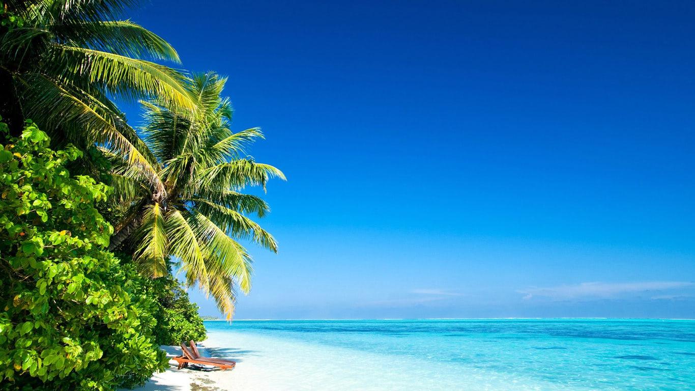 Tropical Island Beach Ambience Sound: Tropical Ocean Wallpaper