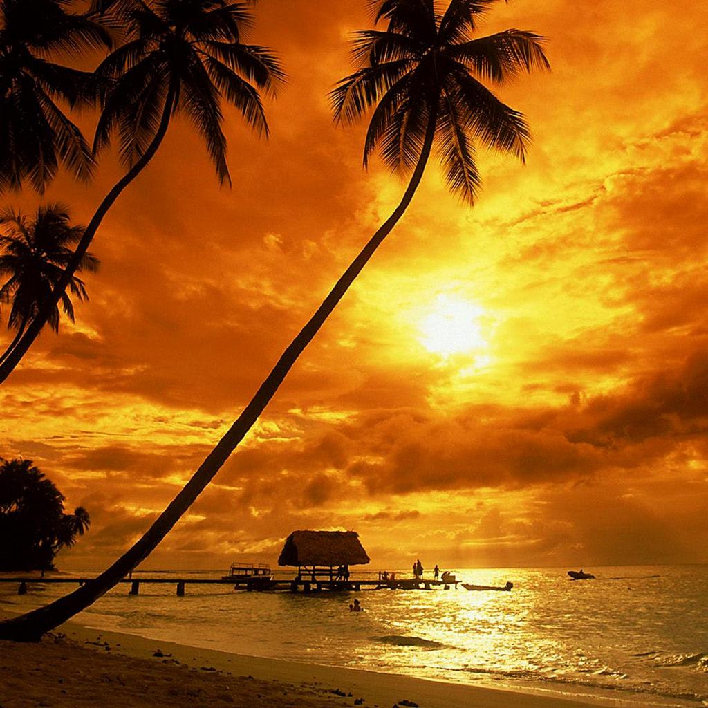 Island Beach Wallpaper: Tropical Sunset Wallpaper
