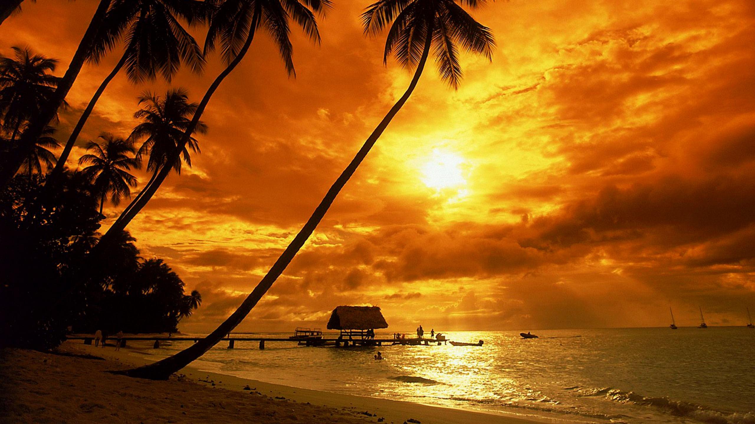 tropical sunset wallpaper - beach wallpapers
