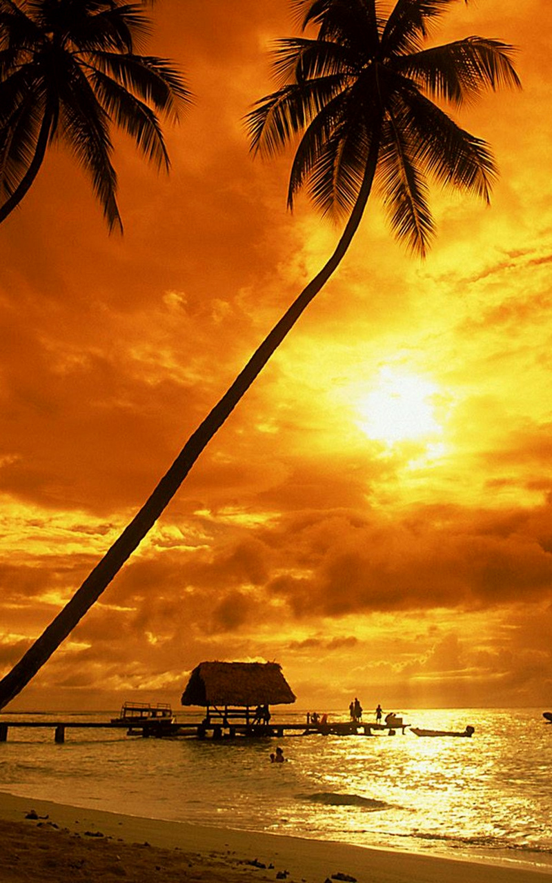 Tropical Sunset Wallpaper Beach Wallpapers