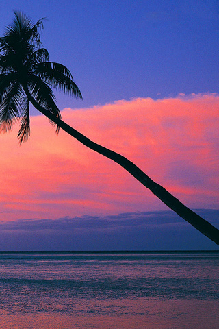 Look At The Pink Sunset From The Beach Wallpaper Beach