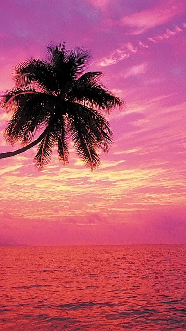Rainbow sunset beach wallpaper - Beach Wallpapers
