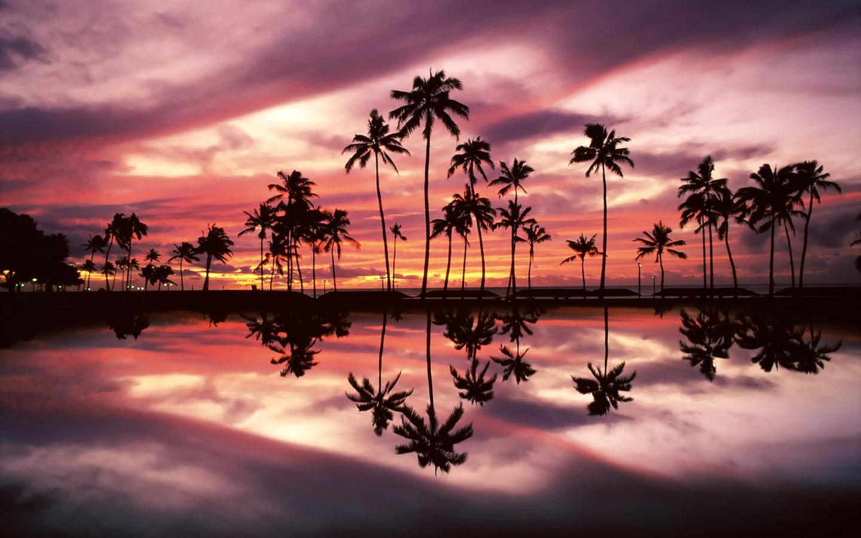 Sunset over the Ala Moana Beach Park, Honolulu, Oahu ...