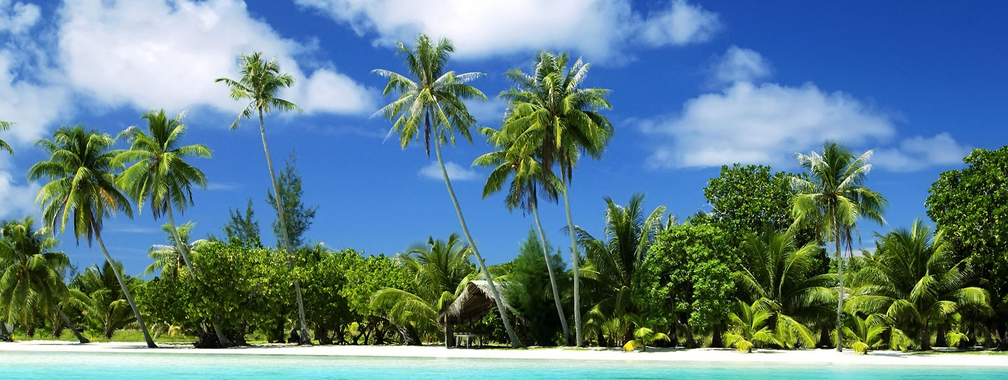 Awesome noon on tropical beach wallpaper
