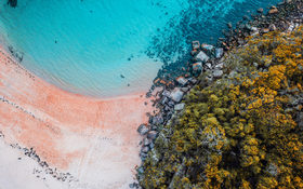 Blue water, sand rocks and amazing colors of nature in Manly, Sydney, Australia