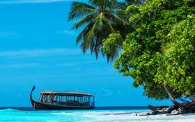 Dhoni boat at Dhigurah Island in the Maldives