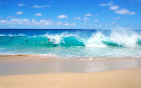 Fun on the playful ocean waves wallpaper