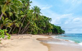 Landscape wallpaper of seashore in Playa Blanca, Saboga, Panama