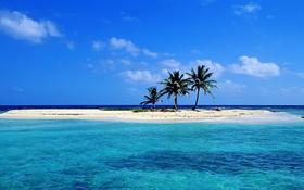 Lonely sandy beach wallpaper