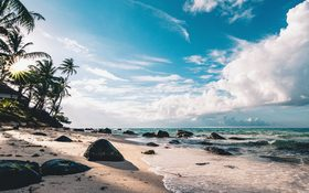 Palm trees and wild waves at Little Corn Island's beach in Nicaragua