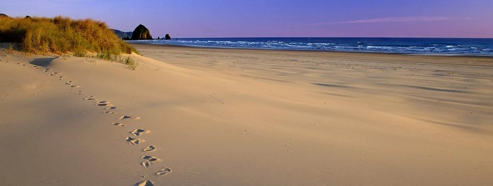Sandy beach wallpaper