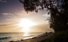 Sunrise at the Barbados Boardwalk wallpaper