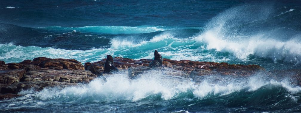 The magical colors of the Cape Point waters