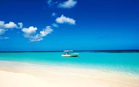 Tropical beach vacation wallpaper