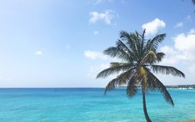 Turquoise waters and clear skies at Miami Beach, Barbados
