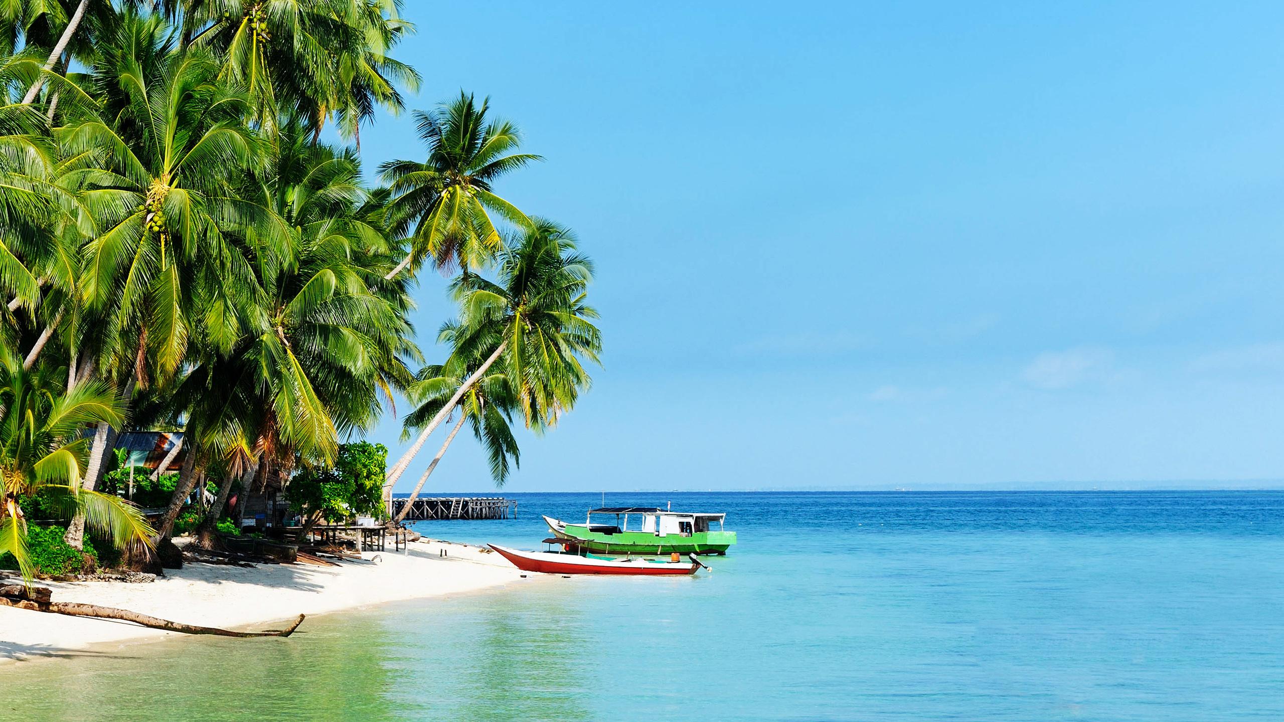 White Sandy Beach Of The Derawan Islands Wallpaper Beach Wallpapers