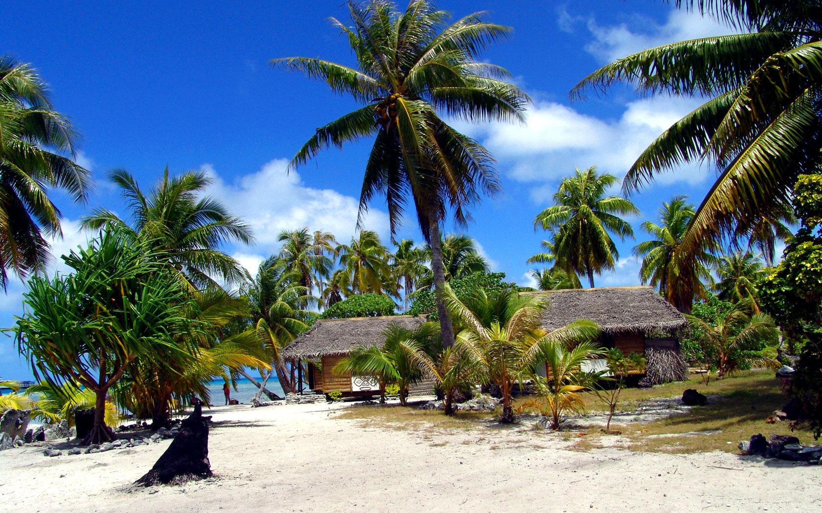 tropical sandy beach wallpaper - photo #27