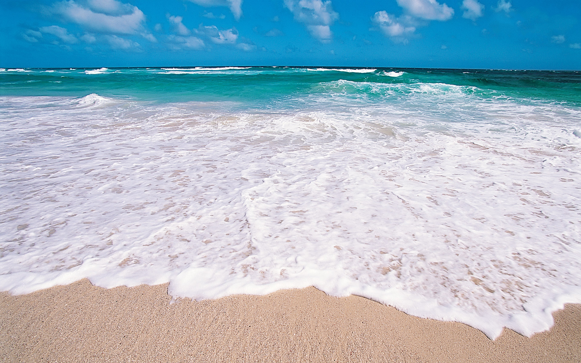 different colors of tropical beach wallpaper beach