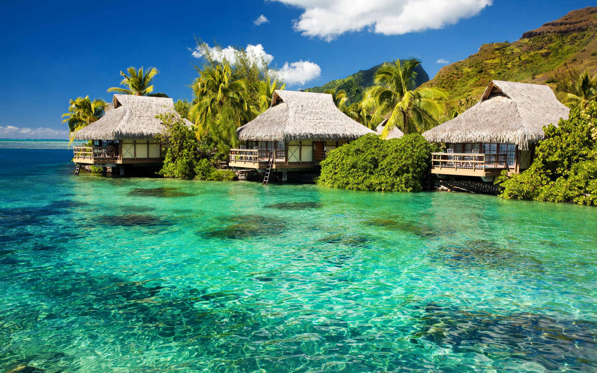 Tiki Huts Wallpaper Beach Wallpapers
